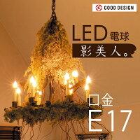 【LED雪ガラス電球「影美人」シャンデリア球タイプ】E17電球色LDB24W