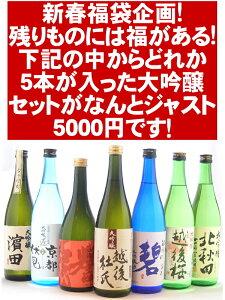 残りものには福がある!年末ギフトあまりの大吟醸酒を集めた豪華福袋!5本入ってジャスト5000円...