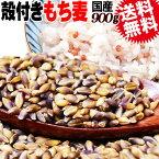 国産 もち麦 ダイシモチ 殻付き 900g 訳あり 小サイズ 雑穀米 に(昨年作付のそばの実がたまに混入することがございますので、そばアレルギーの方はご遠慮ください)
