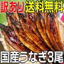 うなぎ 彩食県食 九州 鹿児島 オヤットサア