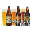 ゆふいんビール 6本セット(3種類(ヴ ァイツェン淡色、ヴァイツエン濃色、エール) 各2本) 各500ml 地ビール 【送料無料】