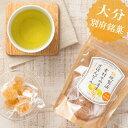 伝統製法 素材そのまま ざぼんピール(ざぼん漬け) 45g ハタ製菓