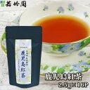 若竹園 九州産紅茶探訪 鹿児島紅茶 40g(2.5g×16袋入り) 和紅茶 国産茶葉 ティーバック