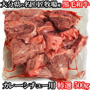 和牛日本一の大分県産 おおいた和牛赤身スネ肉 500g チャンピオン牛の匠牧場産 おおいた豊後牛 カレー・シチュー用 牛煮込み用【送料無料】