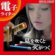 送料無料 電子ライター USB スリム 息を吹きかけて点火 USBライター 電熱 充電式 可愛い おしゃれ USB充電式ライター 熱線ライター ライター タバコ たばこ ER-BRTLT [RV]