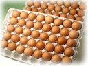 ■10個パック対応■ 有精卵160個
