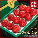 あまおうエクセレント(約450g)福岡産 いちご 苺 イチゴ 甘王 送料無料
