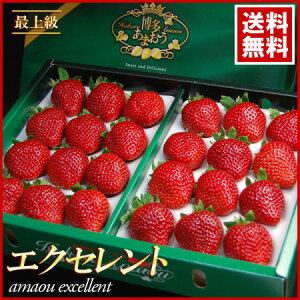 あまおうエクセレント(約900g)福岡産 いちご 苺 イチゴ 甘王 送料無料