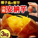 プチ安納芋(3kg)種子島産 サツマイモ さつま芋 蜜芋 送料無料