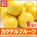 【送料無料】新品種!!カクテルフルーツ(9玉前後/約2.5kg)オレンジとグレープフルーツの融合♪...