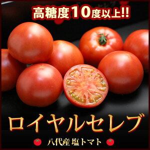 ロイヤルセレブトマト!!塩トマトの最高峰!!熊本県八代地区のロイヤルセレブ(約900g)糖度10度...