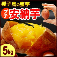 プチ安納芋(5kg)種子島産 サツマイモ さつま芋 蜜芋 送料無料
