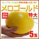 完熟メロゴールド 特大(5玉/約4kg)アメリカ産 グレープフルーツ メローゴールド 食品 フルーツ...