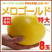 メロゴールド アメリカ グレープフルーツ メローゴールド