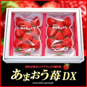 博多あまおう苺DX(300g×2P)福岡産 いちご イチゴ 甘王 贈答用 苺 送料無料【05P…