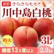 輝々桃(キラキラ桃)川中島白桃3L(6玉)長野産 糖度13.5度以上 送料無料