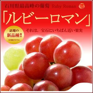【送料無料】ルビーロマン!石川県最高峰の新品種赤ぶどう!驚きの大粒で高糖度、しかも種なし...