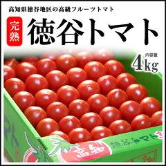 徳谷トマト(4kg)高知産 塩トマト フルーツトマト とまと 高糖度 送料無料