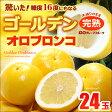 ゴールデンオロブロンコ中玉(24玉)カリフォルニア産 グレープフルーツ 高糖度 送料無料