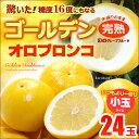 ゴールデンオロブロンコ Mサイズ小玉(24玉)カリフォルニア産 グレープフルーツ オロブロンコ スウ...