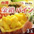 金鑚パイン(3玉/約4kg)台湾産 きんさんパイン 日本向け完熟栽培 パイナップル 送料無料