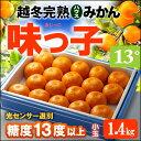 越冬完熟無加温ハウス栽培 味っ子みかん(約1.4kg)長崎産...