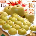 秋栄梨5kg