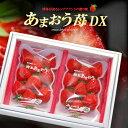 あまおう苺DX(270g×2P)福岡産 博多 あまおう デラ