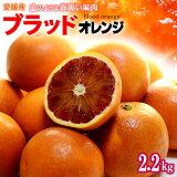 ブラッドオレンジ(タロッコ)