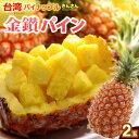 金鑚パイン(2玉/約2.8kg)台湾産 パイナップル きんさ