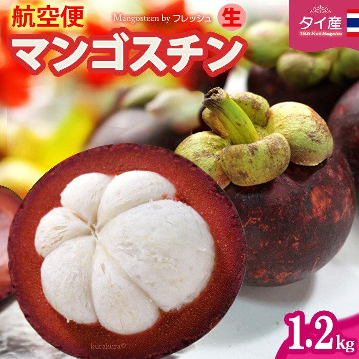 フレッシュ 生マンゴスチン(約1.2kg)タイ産 世界三大美果 甘酸っぱい魅惑のトロピカルフルーツ 食品 フルーツ 果物 マンゴスチン 送料無料