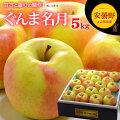 ぐんま名月りんご5kg