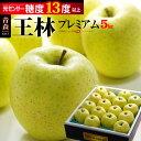 王林プレミアム13(約5kg)青森産 リンゴ 林檎 青りんご 青リンゴ 食品 フルーツ 果物 りんご 送料無料 お歳暮 ギフト