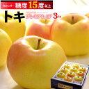 トキ林檎プレミアム15°(約3kg)青森産 糖度15度以上選果 リンゴ 林檎 食品 フルーツ 果物 りんご 送料無料