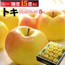 トキ林檎プレミアム15°(約5kg)青森産 糖度15度以上選果 リンゴ 林檎 食品 フルーツ 果物 りんご 送料無料