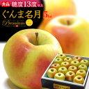 ぐんま名月りんご(約5kg)青森産 リンゴ 林檎 食品 フルーツ 果物 りんご 送料無料 お歳暮 ギフト