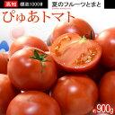 ぴゅあトマト(約900g)高知産 夏の濃厚フルーツトマト 高糖度 甘い 食品 野菜 きのこ トマト 送料無料