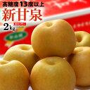 まいど!おおきに屋クラクラで買える「新甘泉梨(約2kg鳥取産 新品種の赤梨 しんかんせん 糖度13度以上 高糖度 和梨 食品 フルーツ 果物 和梨 送料無料」の画像です。価格は4,298円になります。