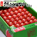 徳谷トマト(4kg)高知産 塩トマト フルーツトマト とまと 高糖度 甘い 高糖度 高級 ギフト 贈答 プレゼン...