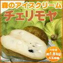 【送料無料】森のアイスクリーム『和歌山産チェリモヤ(約1.8kg)』世界三大美果!平均糖度は極...