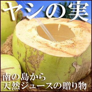 【送料無料】自宅でフローネ♪ヤシの実ジュースが飲めます!!天然のスポーツ飲料椰子の実【やし/...