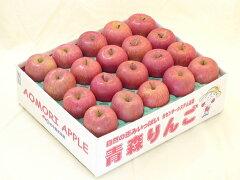 訳あり 青森りんご サンふじ 家庭用5キロ