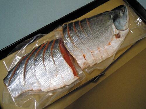 【天然紅鮭 姿切】