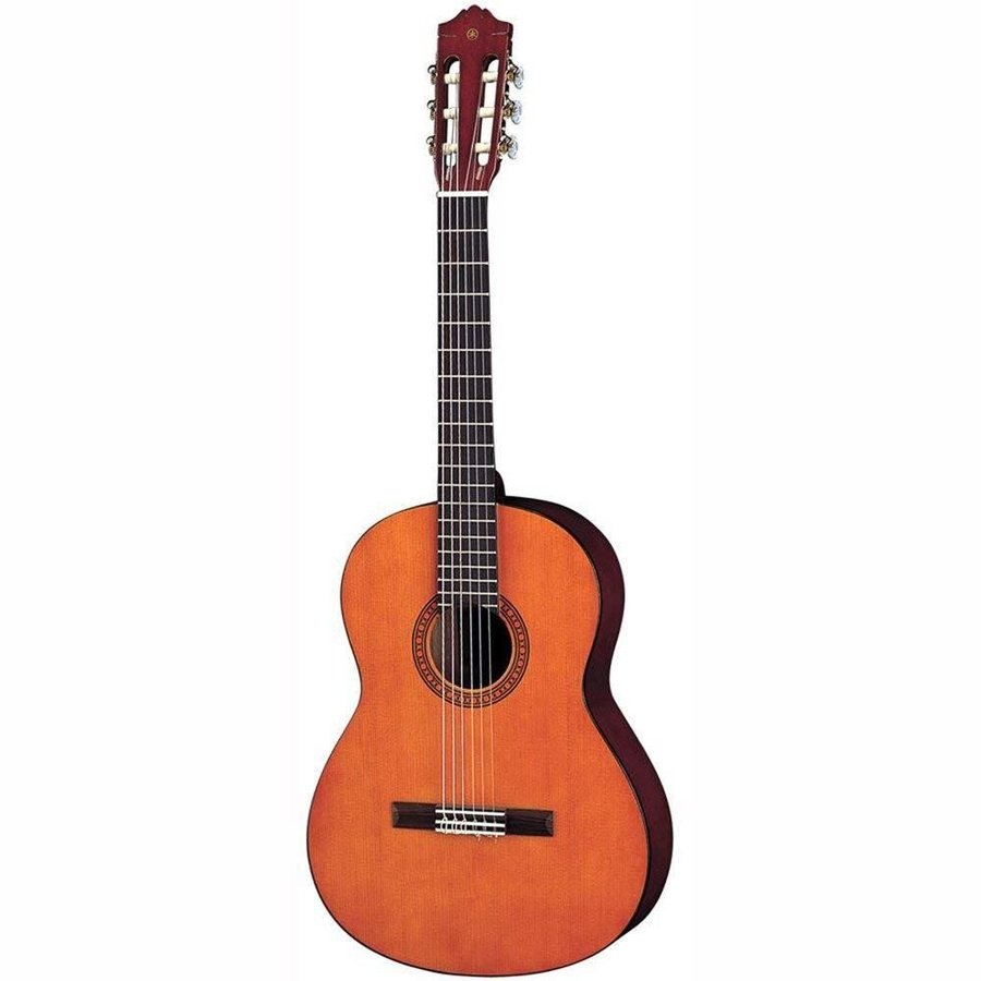 ギター, アコースティックギター  CS40J