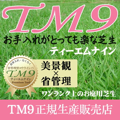 芝生!ティーエムナイン(高麗芝系)TM91平米手入れが楽・簡単で見た目もキレイな芝生楽天市場芝生ジャンル連続1位獲得中やっぱり人工芝より天然芝ガーデニングDIY