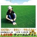 【芝生】ティーエムナイン(高麗芝) トヨタ自動車開発品種 TM9は刈り込みと施肥回数が少ない手...