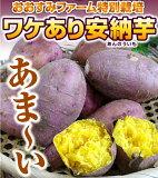 おおすみファームの特別栽培で育てたワケあり安納芋2キロ【送料無料】さつまいも 安納芋 27年 鹿児島 九州 お漬物 おおすみファーム