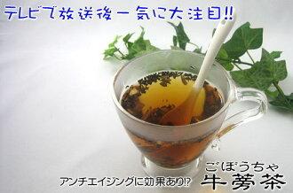 喝抗衰老牛蒡根茶取樣器設置 90 g (大約一個月 min) 牛蒡茶牛蒡茶鹿兒島島九州超級售超級售 10P01Mar15
