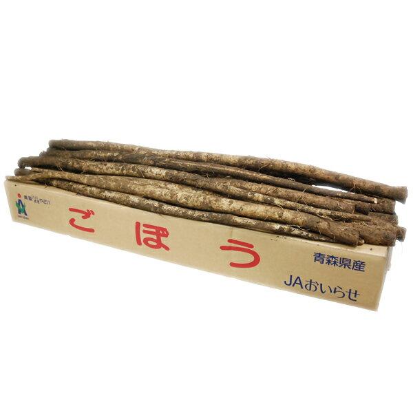 【箱売り】 ごぼう (ゴボウ・ゴボー) 1箱(約10kg/20~30本) 茨城・鹿児島・国産【業務用・大量販売】【RCP】