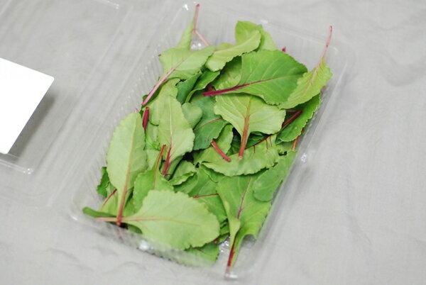 九州産 デトロイト 1パック サラダや料理のいろどりに!  【九州・福岡産】